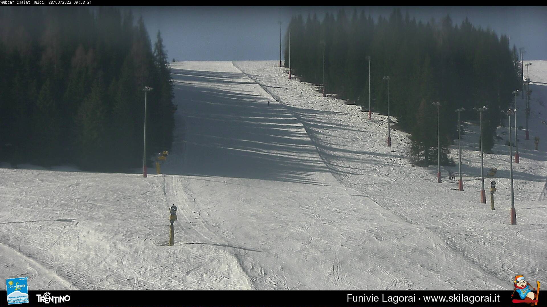Webcam pista bosco