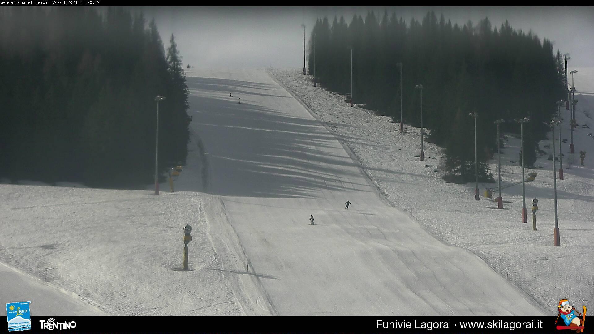 Webcam pista bosco