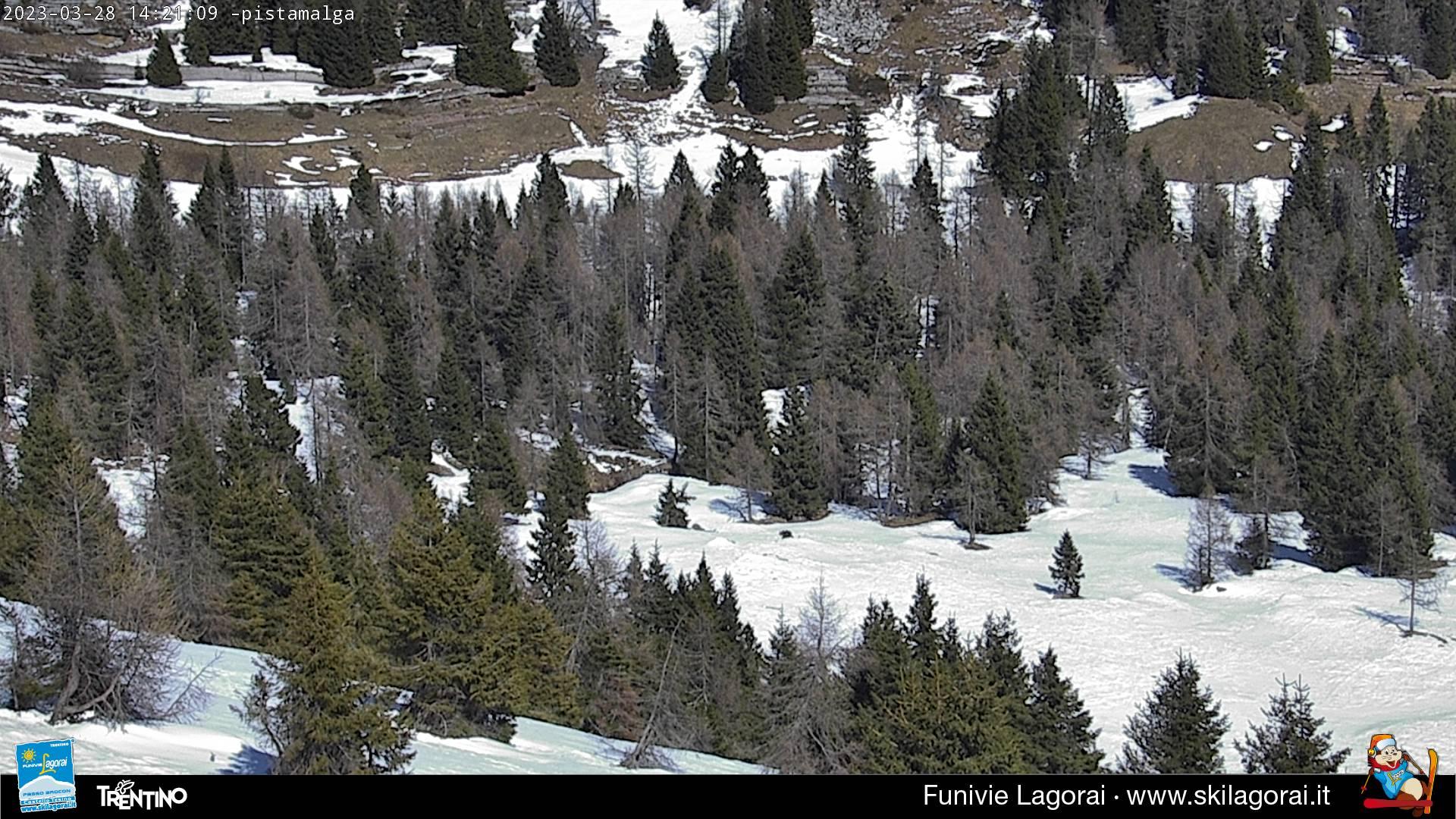 Webcam Pista Malga e partenza seggiovia Valfontane